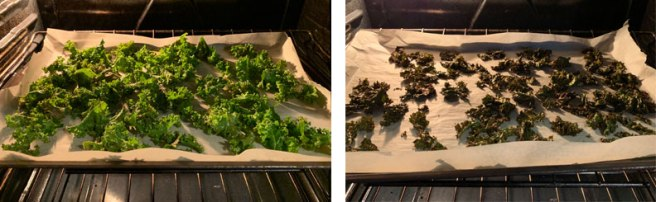 Tasty Kale Chips in the Oven